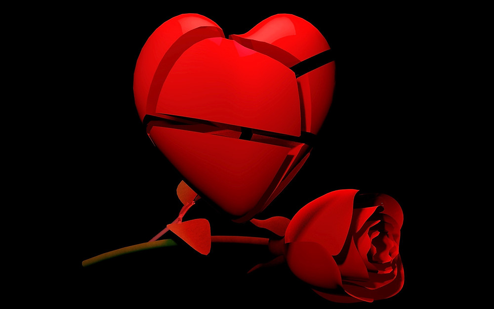 broken heart with red rose