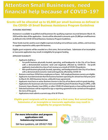 COVID19 Small Business Assistance flyer.