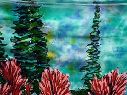 Paintbrush Flowers 09