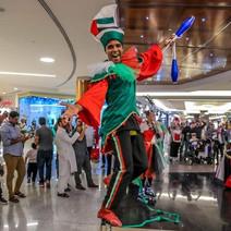 UAE Themed Monocycle