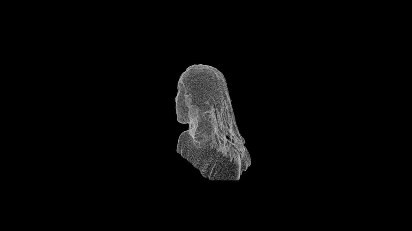 point cloud self portrait animation.m4v