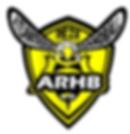 Rezé_Atlantique_Handball.png