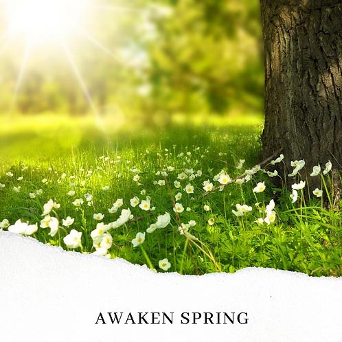 Awaken Spring