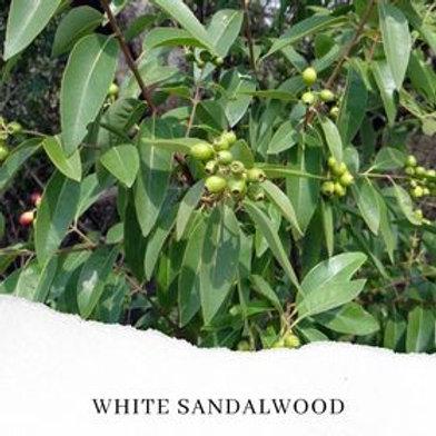 White Sandalwood