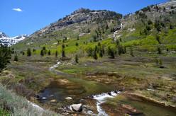 Lamoille Creek and Waterfall