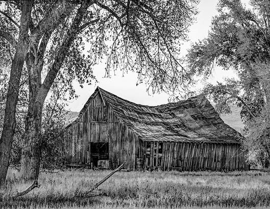 The Jones Barn