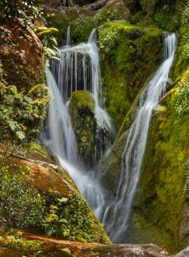 Waterfall in Abel Tasman NP -  New Zealand