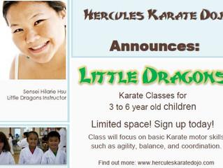 Little Dragons Class