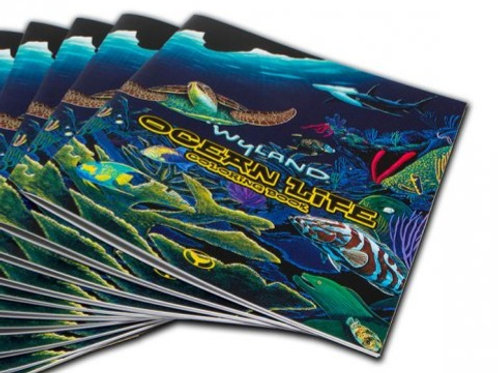 Wyland's Lets Play coloring book - DIY
