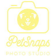 Logo PS PNG.png