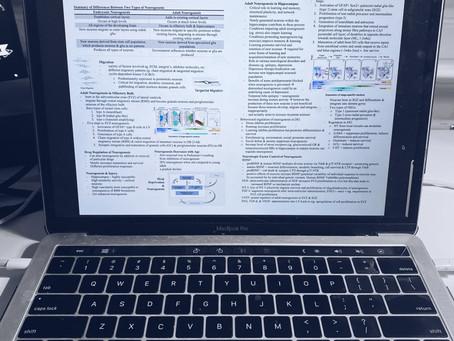 How I Organised My Undergraduate Notes