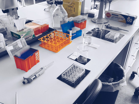 Day in the Life of a 3rd Year Neuroscience PhD Student - July 2020