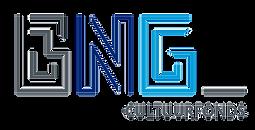 Logo%20BNG%20Cultuurfonds%20kleur_edited