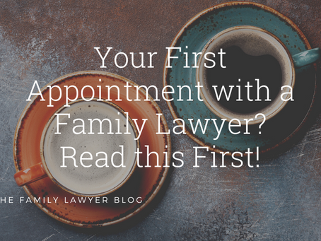 Your First Appointment with A Family Lawyer? Read this First!