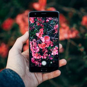 4 amazing mobile apps for editing your photos like a PRO