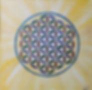 2020-02 fleur de vie solaire.jpg