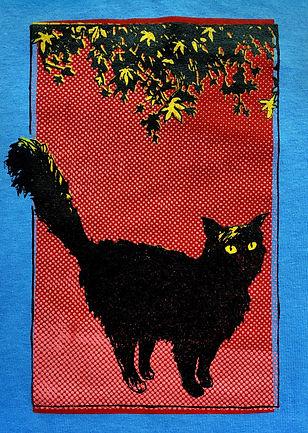 cat blue long.jpg