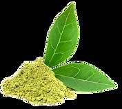 Download-Green-Tea-PNG-Photos.png