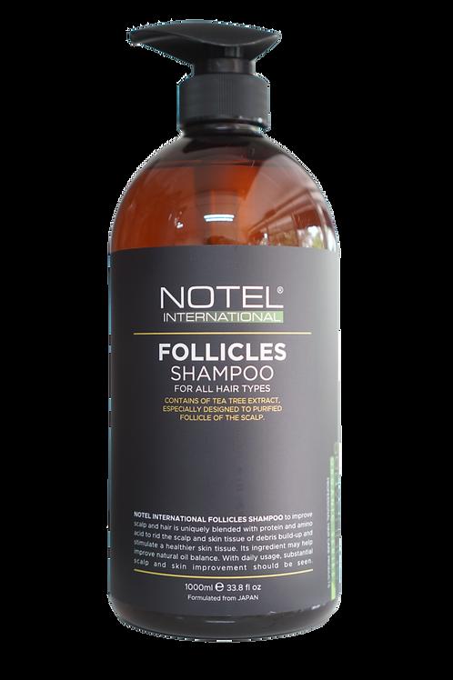 NOTEL Follicles Shampoo
