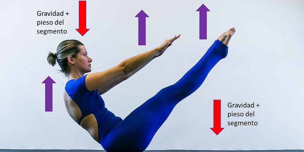 Anatomia e Biomecânica aplicada ao Pilates RJ