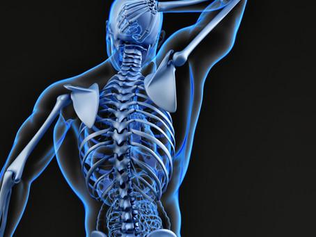 Ombro X Cintura escapular: Biomecânica e as alterações posturais