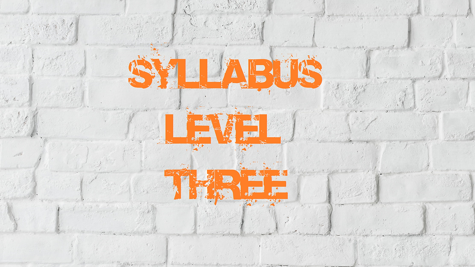 Syllabus Level Three