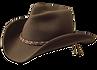 aww-cowboy.png