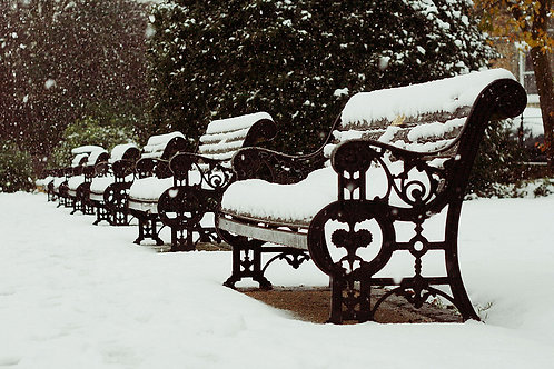 Snow Benches Greetings Card