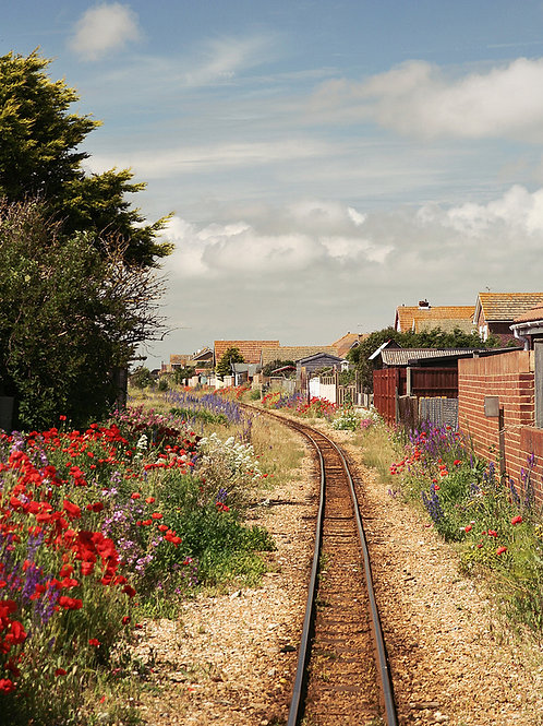 Dungeness Railway Greetings Card