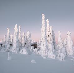 Lapland - Riisitunturin tupa - 2018.jpg