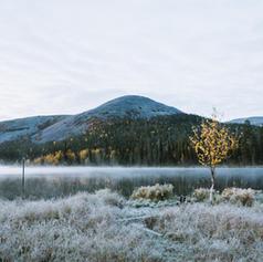Kesänkijärvi - 001.jpg