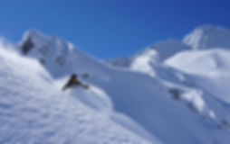 Fresh snow paradise under the kanin, della mea francesco freeride