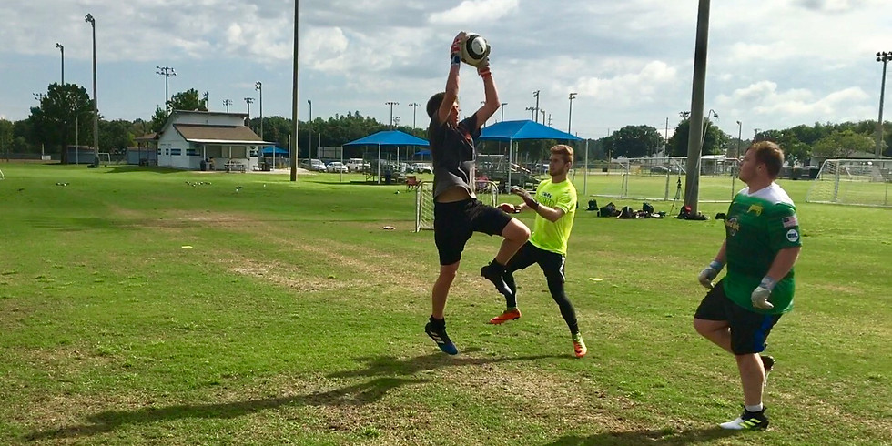 Dealing With Crosses/ Distribution Clinic
