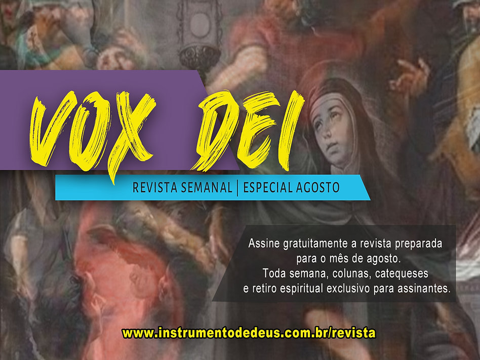 vox 3.jpg