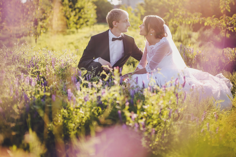 Sesja ślubna w sadzie Trójmiasto