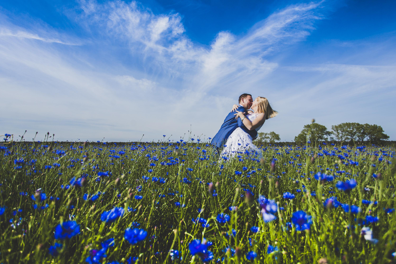 Sesja ślubna w chabrach Trójmiasto