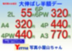 大伸ばし半額A4web_edited.jpg