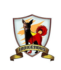 indigenous.png
