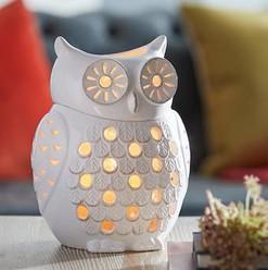 woodland owl - $70.jpg