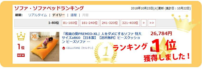 発売初日、ランキング1位獲得!