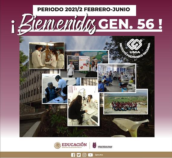 GENERACION_56.png