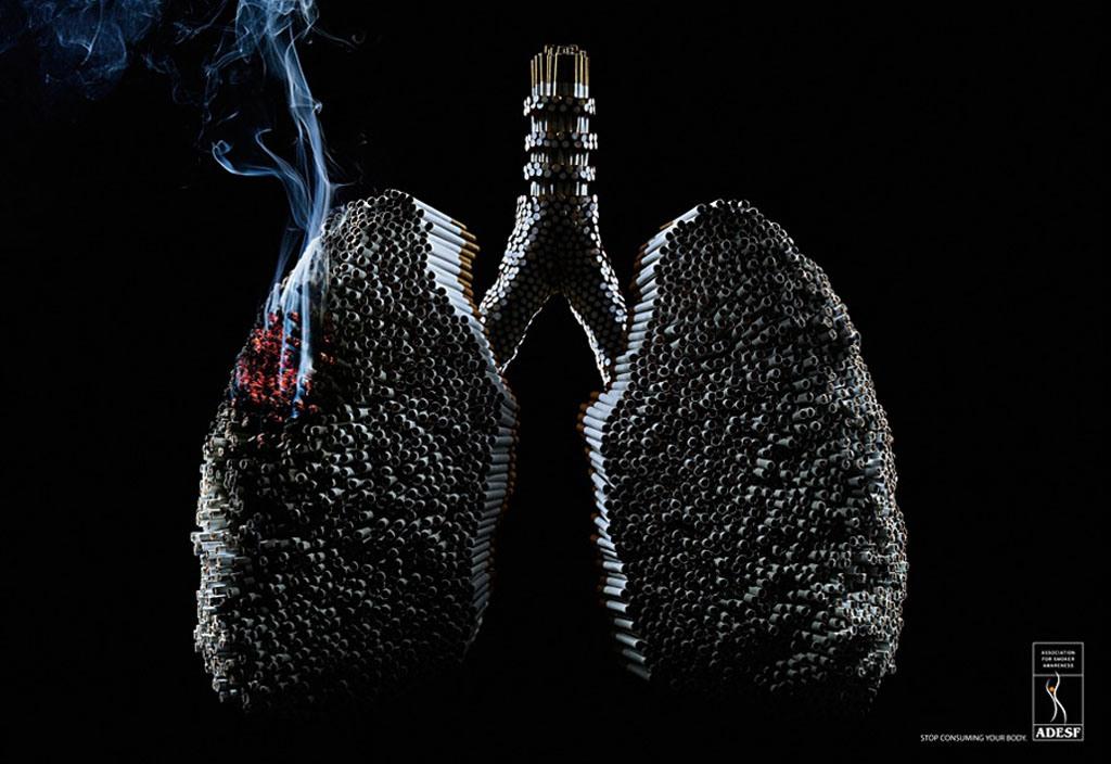 humo-neob_23144_12657200a-11