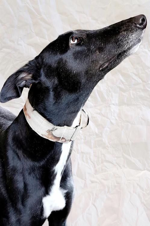 Greyhound Martingale Collar with Rabbit Design