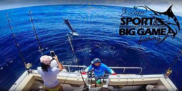 Big Game Fishing for Marlin & Marlin wit