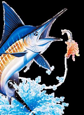 Blue Marlin Fishing X-SCAPE
