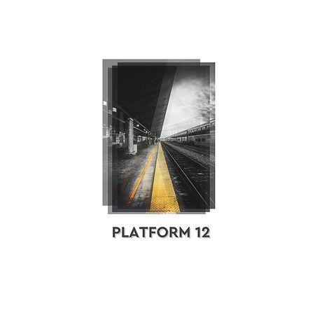 Platform 12 jpeg.jpg