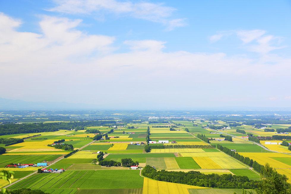 帯広の田園風景