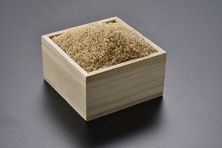 マスのお米
