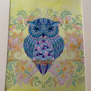 Would you like to colour in an Owl?