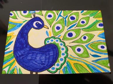 Peacock in pens